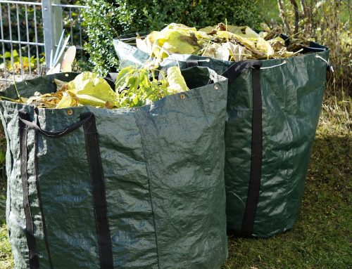 Your Essential Garden Waste Skip Hire Guide